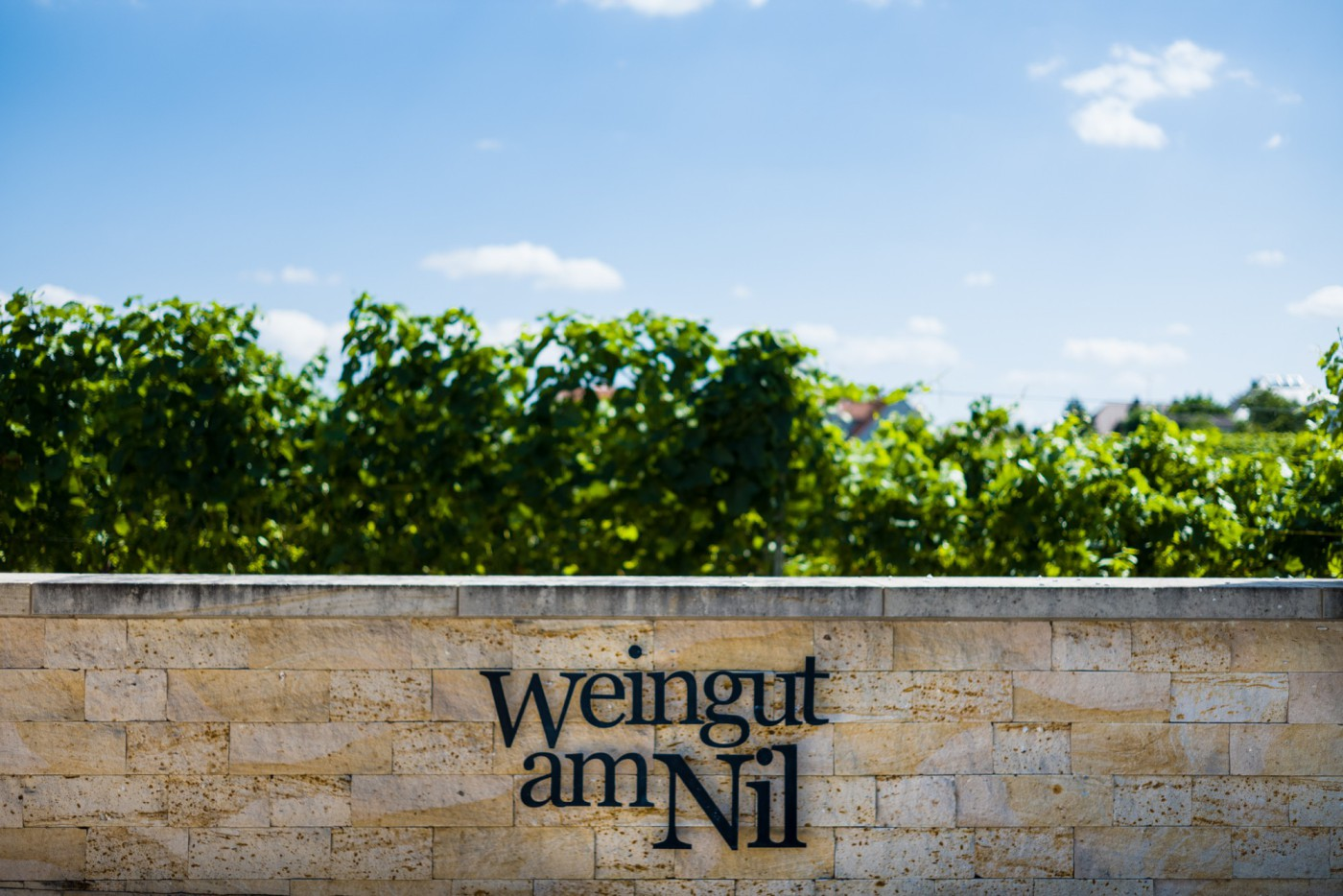 Weingut am Nil - Bild 5